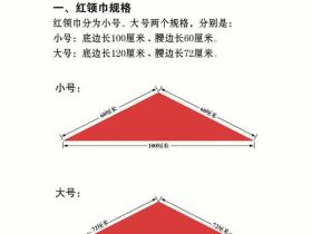 中国少年先锋队标志礼仪基本规范(附word版下载)