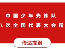 中国少年先锋队第八次全国代表大会精神传达提纲
